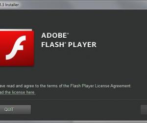 adobe flash player version 11.1 0 or greater free download