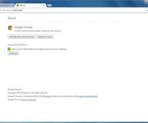 Adobe, flash Player downloaden