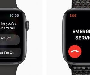 Apple Watch Fall Detection And the 4th Amend. Community Caretaking Exception