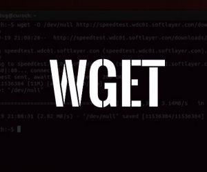 Python Wget Proxy