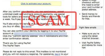 fake paypal notification