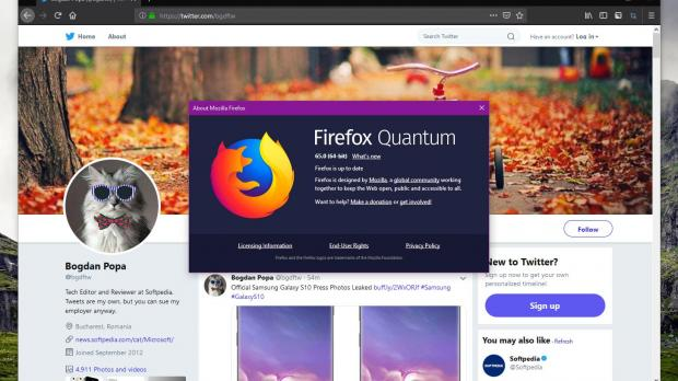 Mozilla Pulls Firefox 65 Update for Windows Due to Antivirus Issue