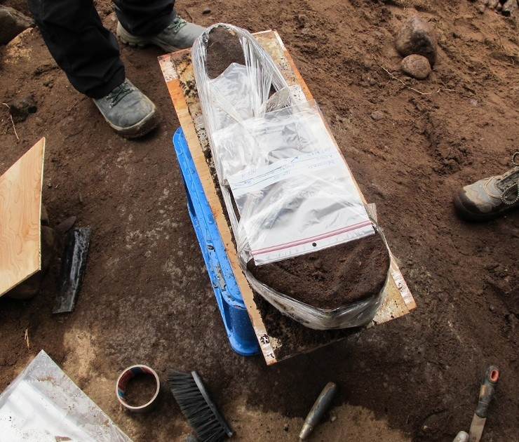 8000 Year Old Skull Appears To Have Brain Fragments Still Attached