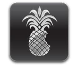 Iphone-4 jailbreak wizard for firmware 5-0-0   iphone-developers.