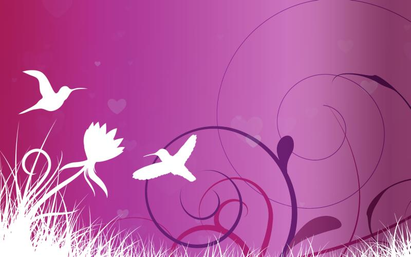 Download Free Windows 7 Lovebirds Theme to Celebrate