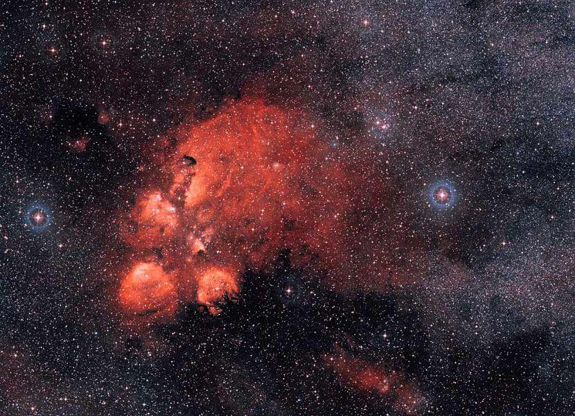 Eso Images Amazing Cat S Paw Nebula