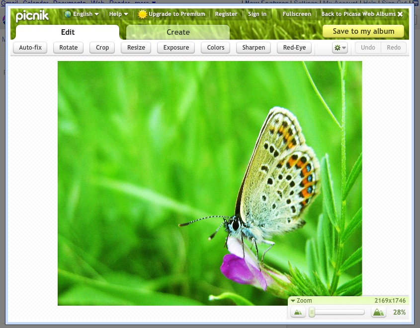 Picasa photo online editor
