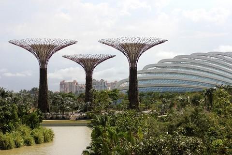 Singaporeu0027s New High Tech Garden