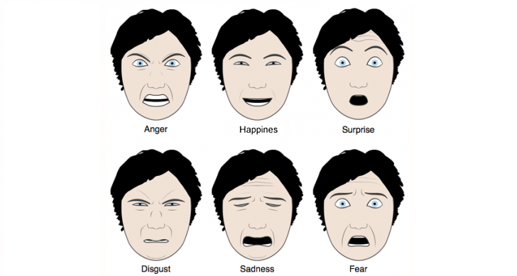 The Six Basic Human Emotions Show In A Chart