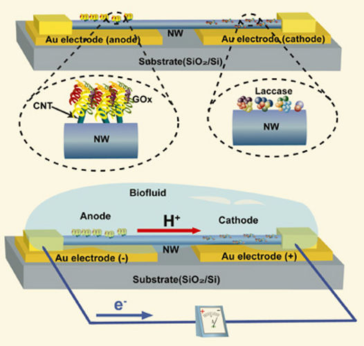 Miniature Fuel Cells Produces Energy from Biofluids