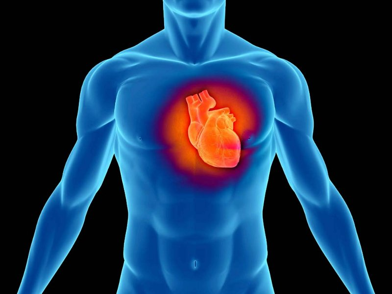 Stem Cells Could Repair and Regenerate Tissue Damaged by a Heart Attack