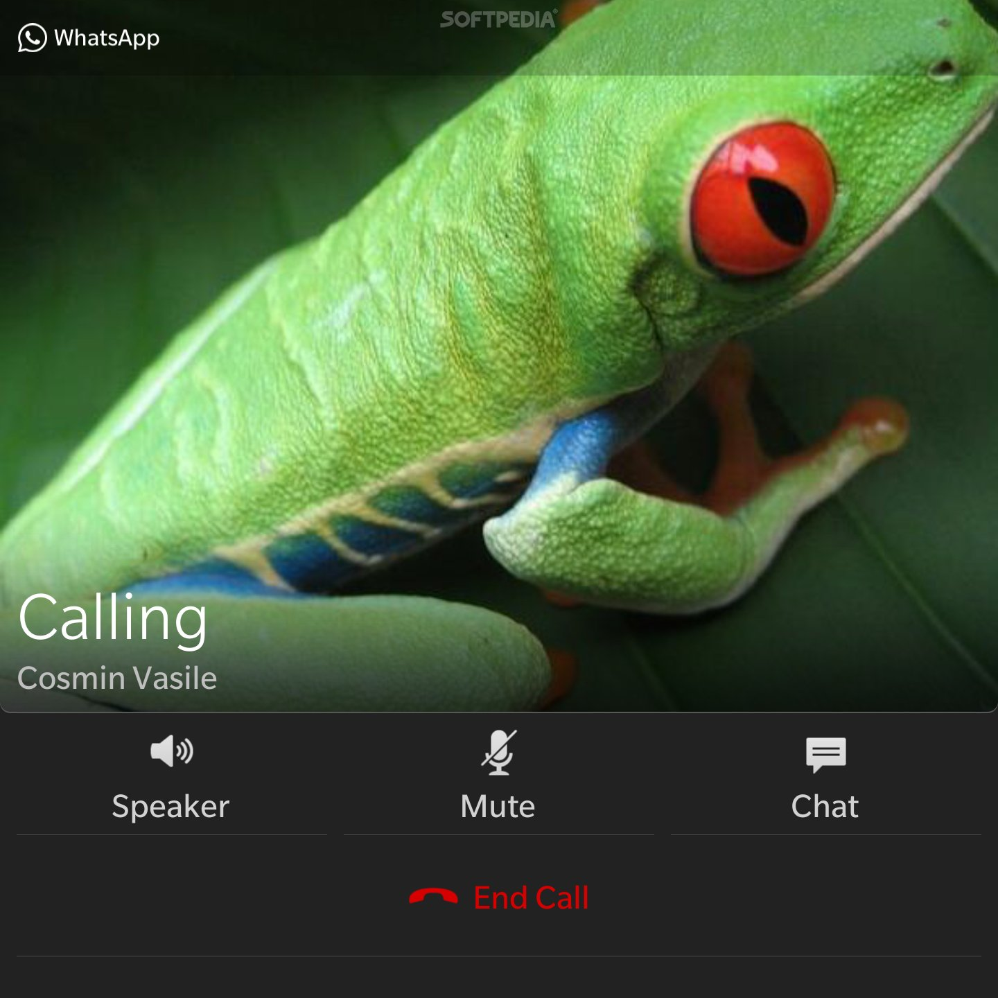 WhatsApp for BlackBerry Now Enables Voice Calling