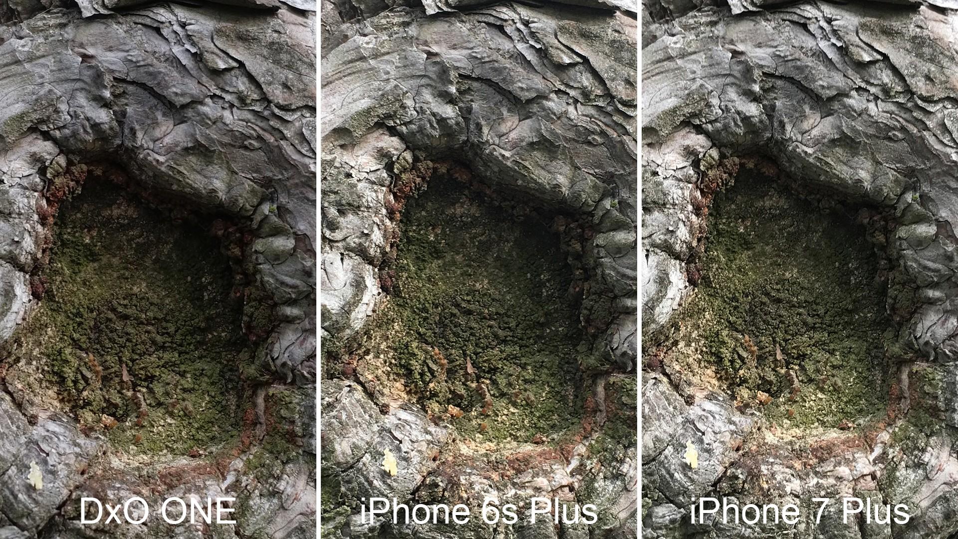 Dxo One Vs Iphone X
