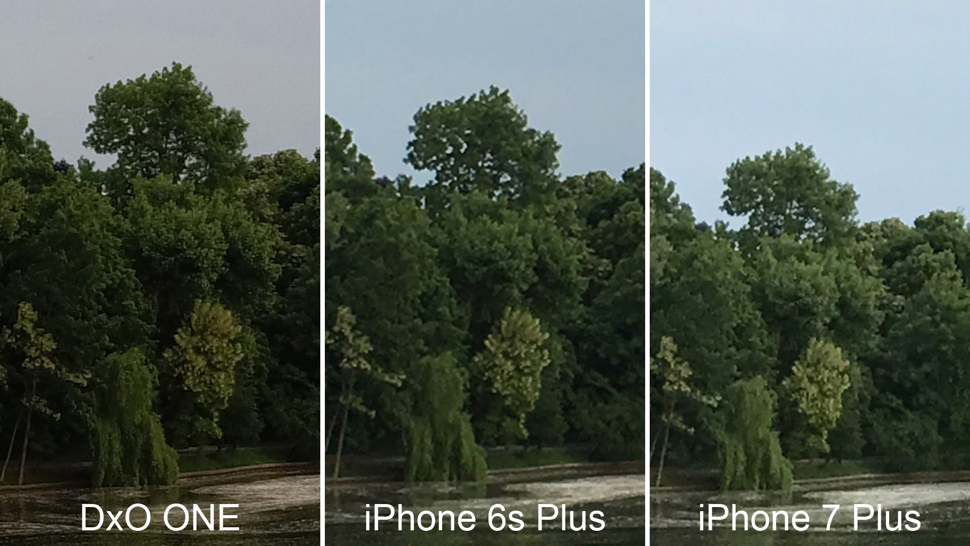 iphone 6s vs iphone 7 vs iphone 8