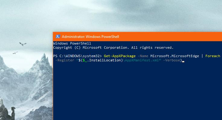 running the command in powershell