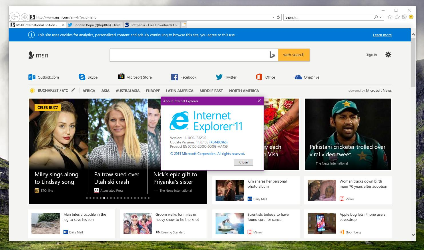 Internet Explorer 11 in Windows 10 19H1