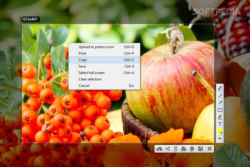 Lightshot Review: The Fastest Way to Take Customizable Screenshots