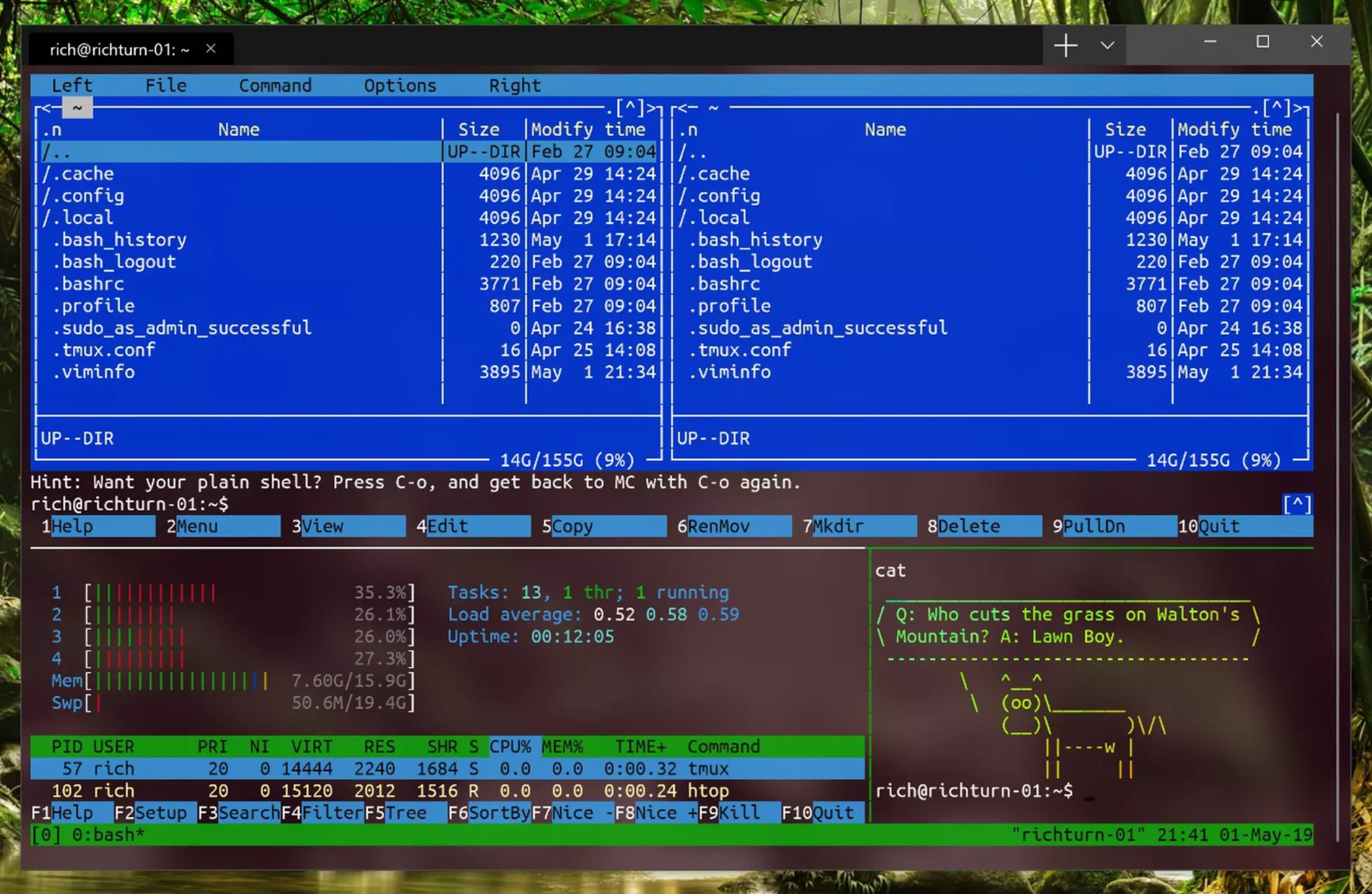 Microsoft Launches Windows Terminal Command Line App for Windows 10