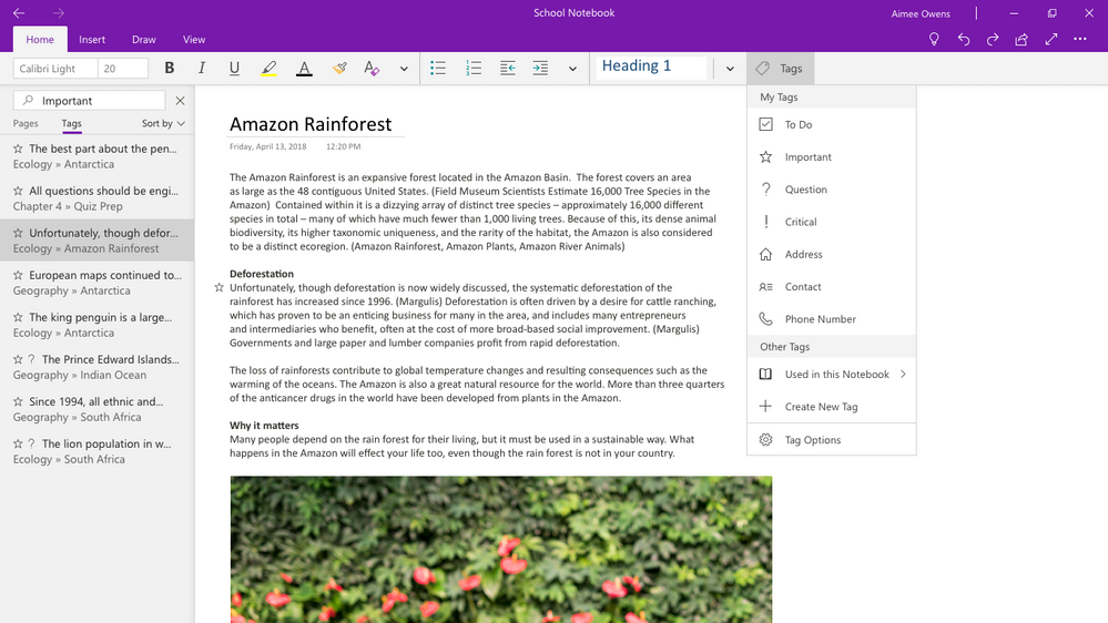 Microsoft Office 2019 to Replace OneNote Desktop App with