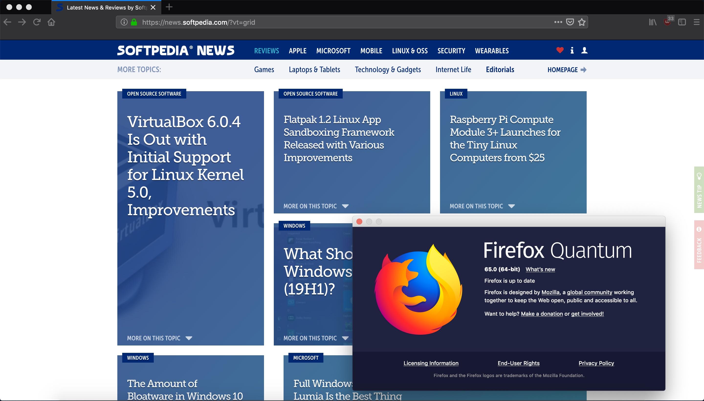 Mozilla Firefox 65