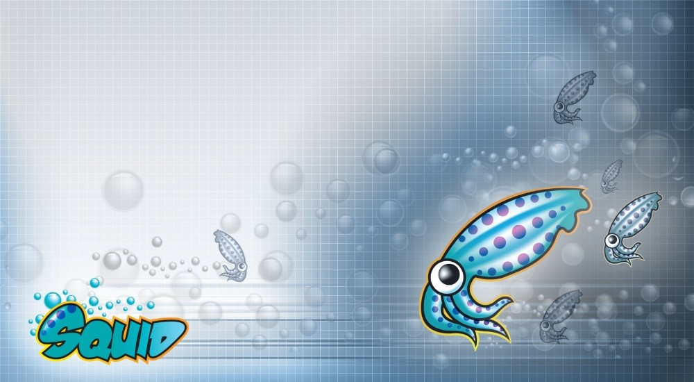 New Simple Attack on Squid Proxies Leverages Malicious Flash Ads