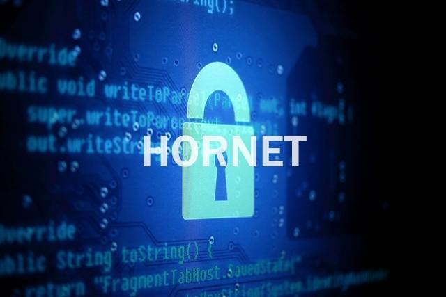 Researchers Develop HORNET, a Faster Tor Alternative