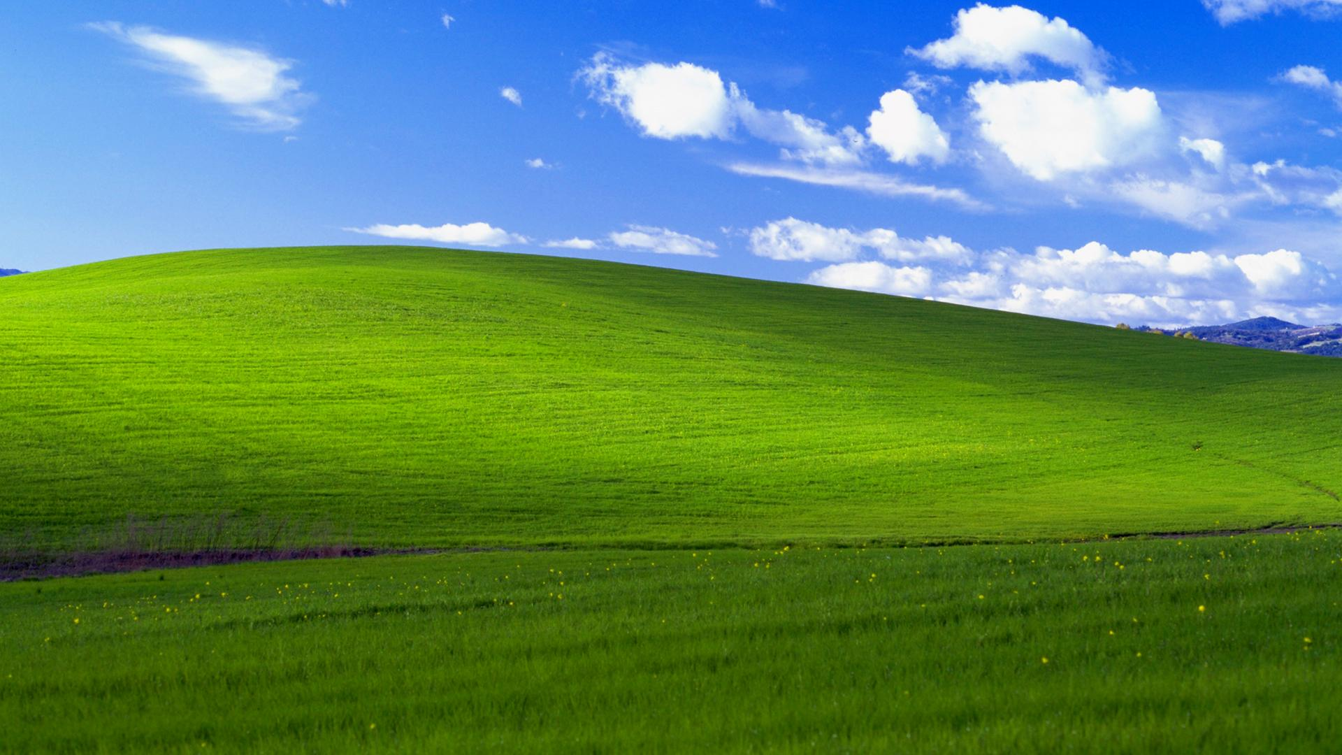 the most famous windows wallpaper ever turns 20